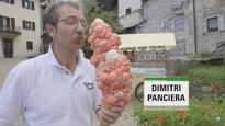 Watch: Italian sets Guinness World Record by balancing 121 scoops of ice cream on cone