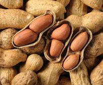 Know These Health Benefits Of Groungnuts