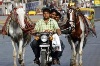 Ban on entry and exit of horses in Bavla taluka of Gujarat