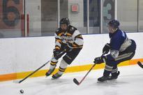 The Tavistock Braves will open their Provincial Junior Hockey League season Friday at home against the Wellesley Applejacks