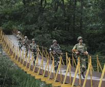 BSF seizes 276 cattle, illegal goods worth Rs 49 lakh on India-Bangladesh border in five days