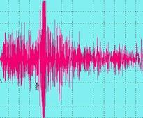 8 magnitude quake hits New Zealand: CENC