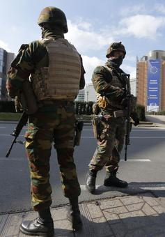 'Belgium has gone into lockdown'