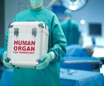 Payback time: Donor's kin to get free organ