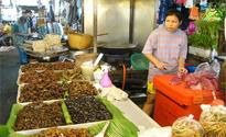 The latest buzz: eating insects can help tackle food insecurity, says FAO