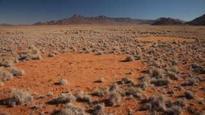 Theory explains Namibia's 'fairy circles'