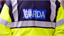 Man (24) killed in Galway road crash