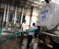 Now India will get camel milk by dairy giant Amul in next 3 months