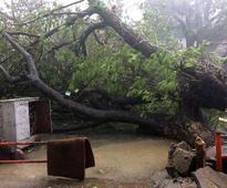 Cyclone Vardah wreaks havoc in Tamil Nadu, Met dept issues further warnings