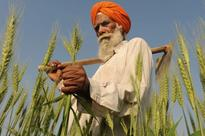 India launches organic farming scheme
