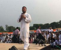 PM Modi has made cows 'an election stunt', says Rahul Gandhi during UP roadshow
