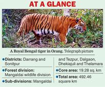 Orang now a tiger reserve
