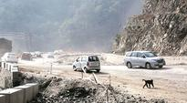 Drive to Queen of Hills hits a dead end as NGT order brings work on Parwanoo-Shimla highway to standstill