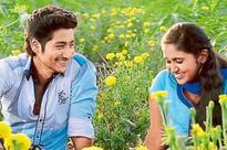 Hindi movie channels push dubbed regional fare
