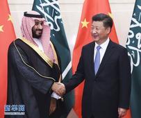 Xi Jinping Meets with Deputy Crown Prince Mohammad bin Salma...