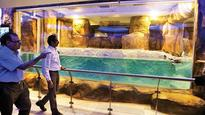 Sena chief opens new penguin enclosure, takes swipe at BJP
