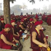 I Walked For More Than 200 Kms From Kushinagar To Lumbini And This Is What I Found