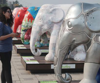 PIX: Did you see the elephant parade in Mumbai?