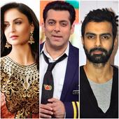 Elli Avram, Ashmit Patel, Armaan Kolhi  5 Bigg Boss contestants that Salman Khan mentored