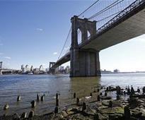 Guy Jumps From Brooklyn Bridge, Then a Stroke of Luck
