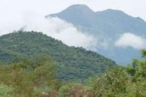 Western Ghats' biodiversity 'faces threat', says report