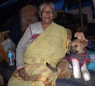 """The """"Dog Lady of Delhi"""" Looks After Over 400 Strays"""