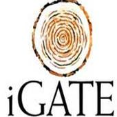 iGate faces probe on violation of Fed securities law