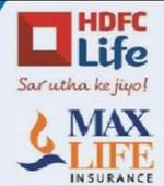 HDFC, Max agree on terms of merging life insurance biz