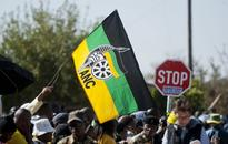 ANC NEC members shouldn't be in government: branch
