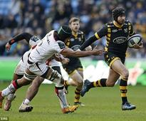 Wasps 17-14 Toulouse: Dan Robson snatches victory from the jaws of defeat with late try