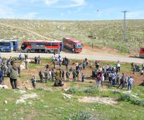 Israeli and Diaspora Youth Bond over Trees in Maale Michmash