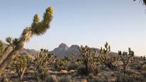 Pew Applauds Designation of National Monuments in California Desert