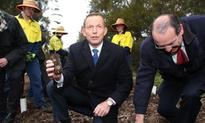 Tony Abbott defends green army amid reports it will be scrapped