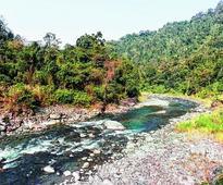 No big cats in new Arunachal tiger den