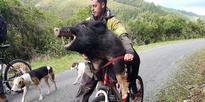 Wheeling home the bacon