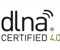 DLNA Levels Up