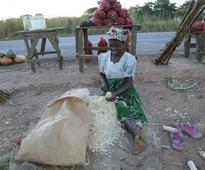 Pan-African Parliament Seeks Larger Role in Food Security, Policy
