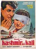 Kashmiri artist recreates 'Kashmir Ki Kali' poster to include pellet injuries