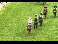 2016 Stan James Champion Hurdle  Racing UK