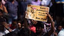 Not just Jallikattu: 12 instances of horrible animal cruelty from across India