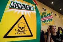 Campaign group Avaaz calls on EU to block $66 billion Bayer-Monsanto deal