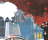 Smallcap index at new high; Waterbase, Godawari Power zoom 100% in 1-month