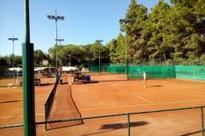 Petra Kvitova's rise above professional and personal turmoil