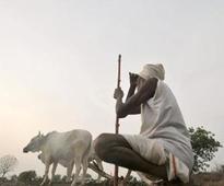 Compensate farmers, forum demands