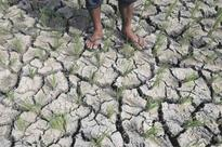Davao Oriental put under state of calamity due to drought