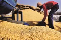RBI extends, revalidates wheat cash credit limit in Punjab