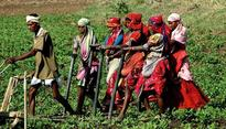 Farm loan waiver: will Maha govt's political gambit cost it economically?