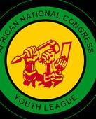 ANCYL's call for a Cabinet reshuffle 'extremely reckless': YCL