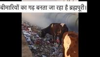 Delhi: Genuine concern or political tactic? Youth Congress worker uploads video of filthy Brahmpuri