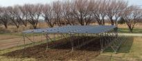 Japanese Experiment Gauges How Solar And Crops Can Coexist